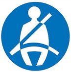 Business Continuity and Seat Belt Safety - an analogy